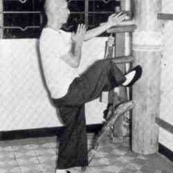 Ip Man met Wooden Dummy